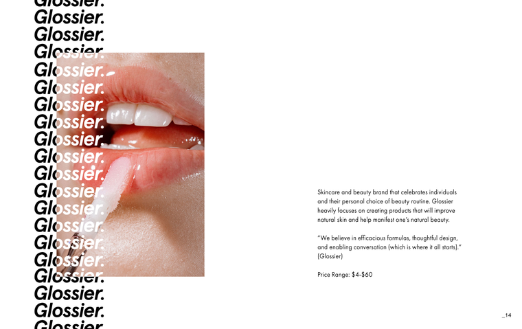 PaolaRios_Capstone_Booklet_Page_08.png