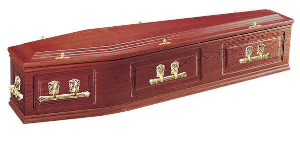 photograph of  canterbury sapele veneered coffin with lpressed panel sides with oscar bars and t ends for sale lincolnshire