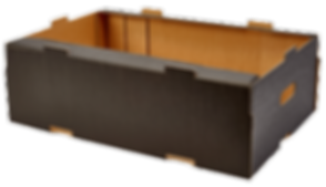 T&B-containers-black-carton-supplier.png
