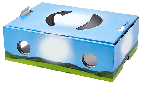 T&B-containers-bespoke-cardboard-carton-