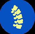 ScopeSpine: Endoscopic Spine Surgery