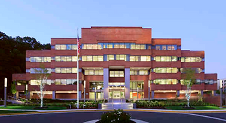 The Spine Center - Metro Orthopedics and Sports Therapy