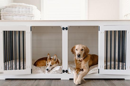 Dog Beds for B & B Kustom Kennels