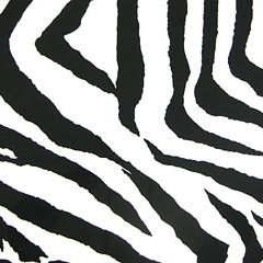 Black - Zebra