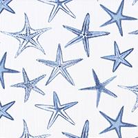 Palace - Starfish