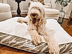 Custom Dog bed new.JPG