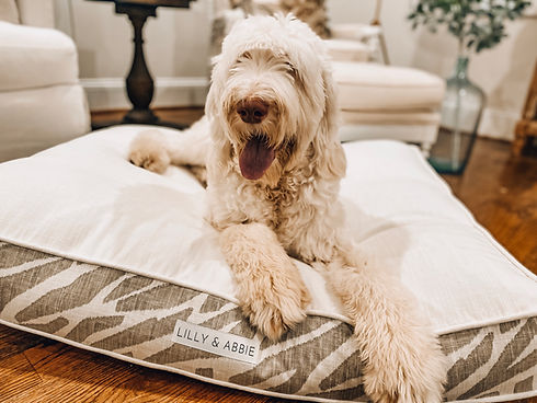 Custom Dog bed new.JPG