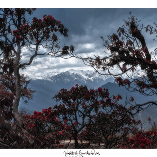 Deorital campsite view
