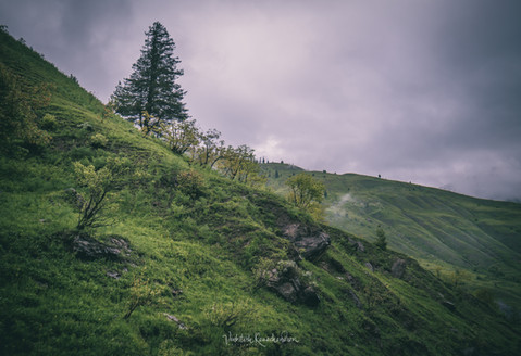Gurez - North Kashmir
