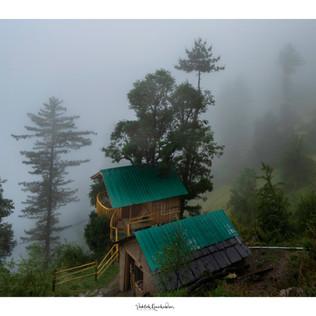 The tree house - Jibhi