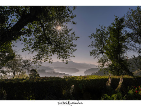 Into the Quiet Corner of Nilgiris