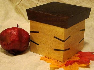 Small Poplar Box with Walnut Lid