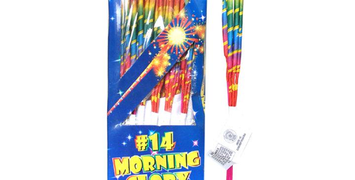 #14 MORNING GLORY