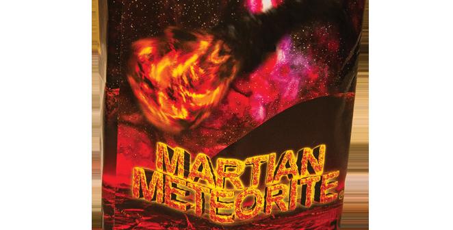 Martian Meteorite