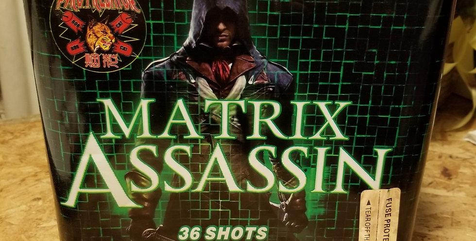 MATRIX ASSASSIN