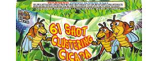 CLUSTERING CICADA