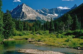 wildhorse-creek-idaho-pioneer-mountains-