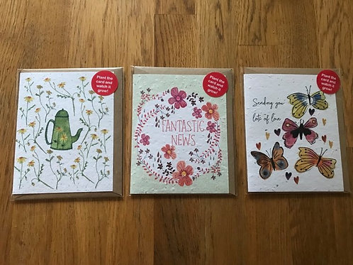 Set of 3 Seed Cards