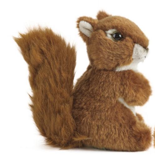 Living Nature Medium Red Squirrel
