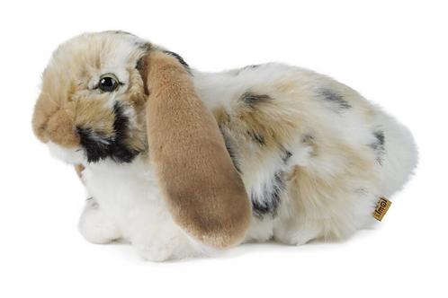 Living Nature Brown Dutch Lop Eared Rabbit