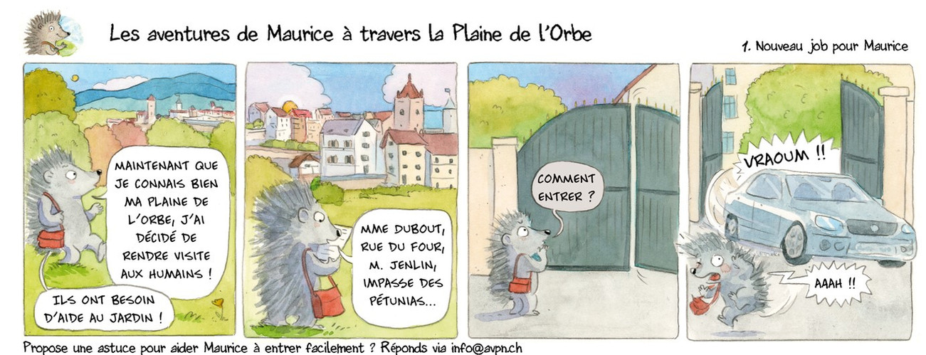 Planche 3_ 1.jpg