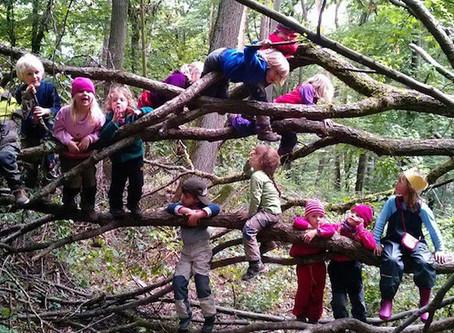 L'école de la forêt, une chance pour nos enfants...