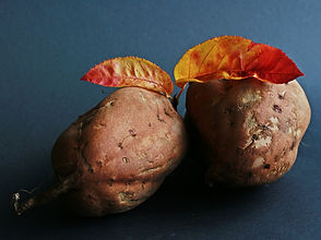 sweet-potato-534874_1280.jpg