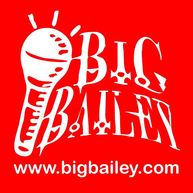 BIG-Bailey-logo-w-WEB--web-size-white-ar