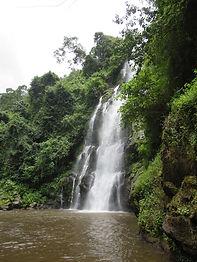 Marangu Wasserfall im Wald