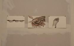 Ausstellungsansicht Zeichnungen