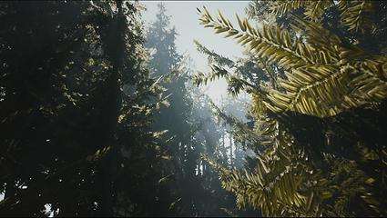 Captura de pantalla (117).png