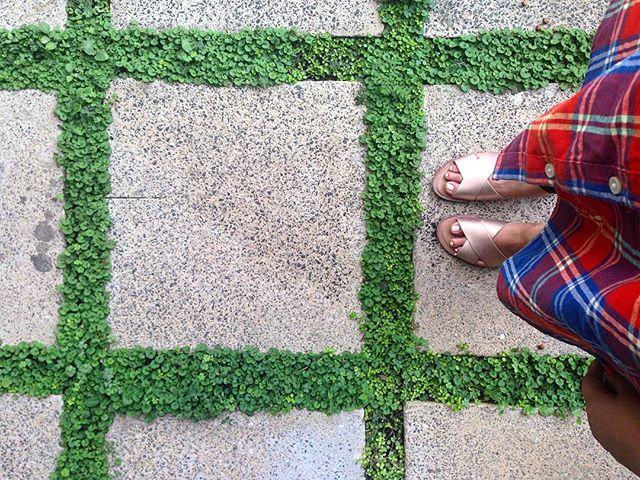 ⬜️⬜️⬜️ #square #blogger #collegeblogger #fashionblogger #modaelsalvador #modaguatemala #flannel __af