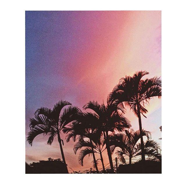 Pink sunset 🌺 #palmtrees #sunset #friday