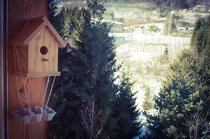 cavedago-finestra casetta uccellini_edit