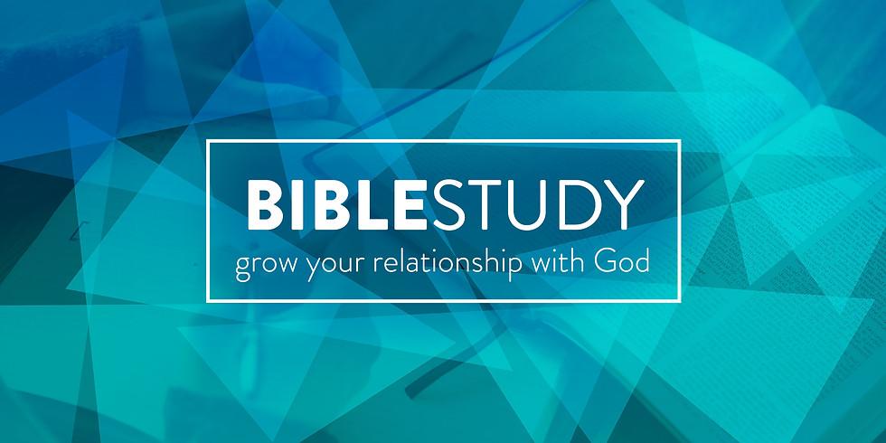Wednesday Night Bible Fellowship