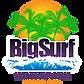 Big Surf Logo