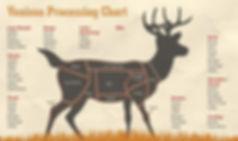 deer-chart.jpg