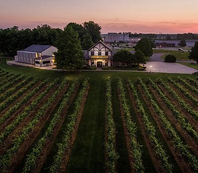 Drone photo over vineyard.jpg