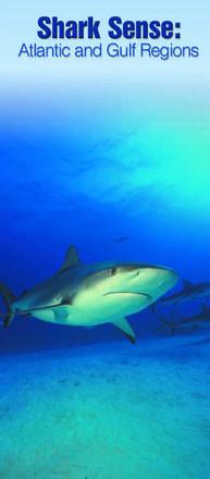 Shark Sense