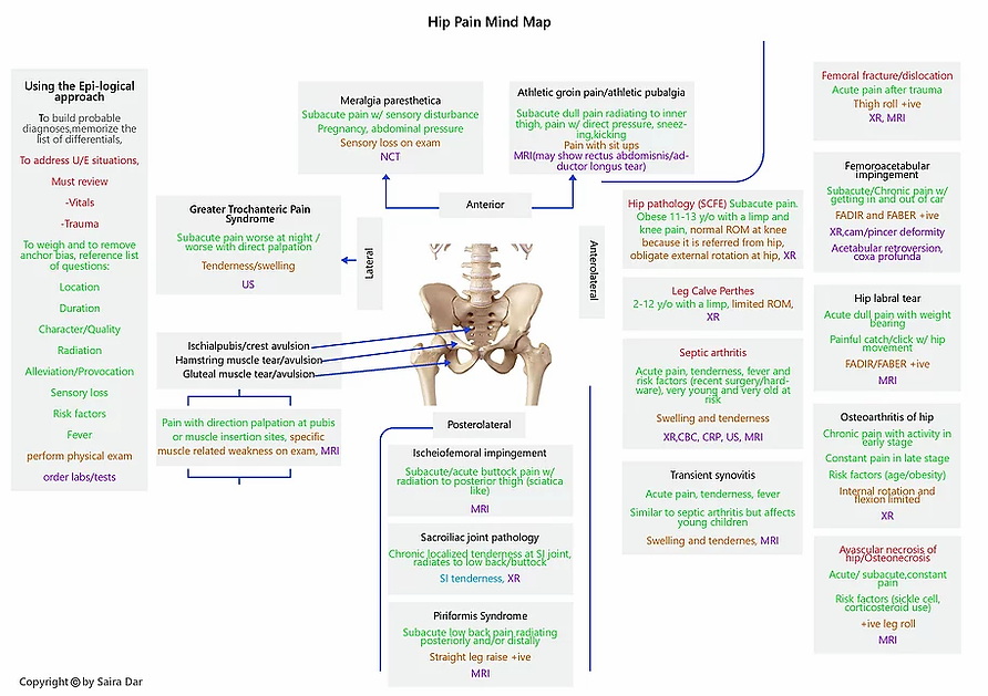 Hip Pain Mind Map.webp
