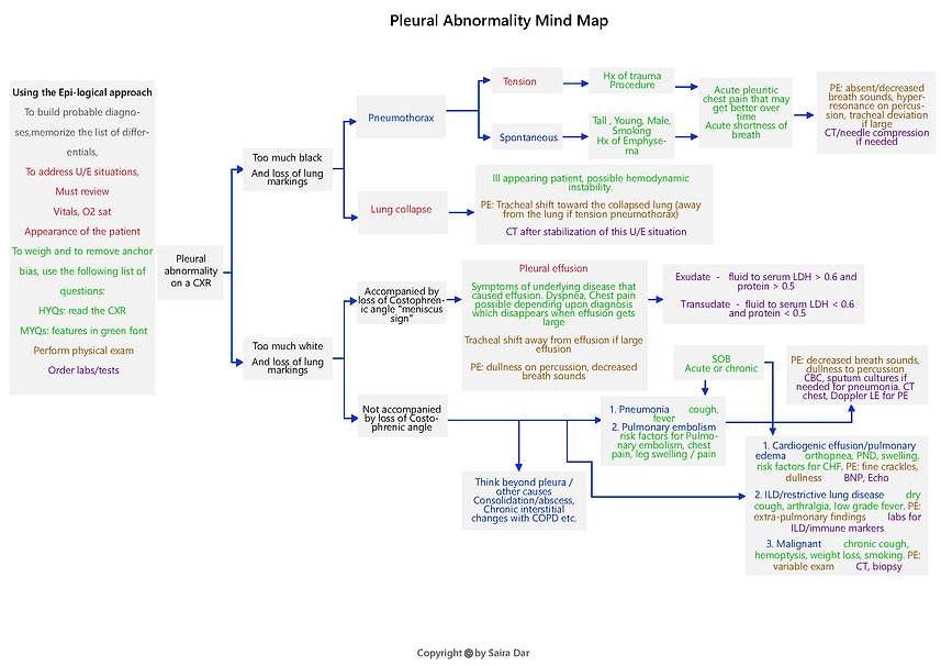 Pleural Abnormality Mind Map.jpg