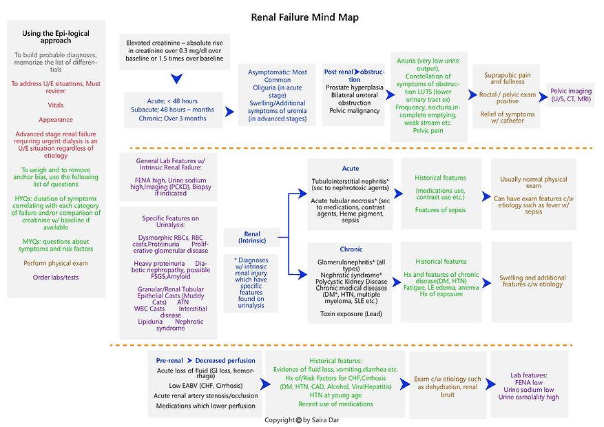 Renal Failure Mind Map.jpg