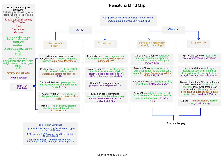 Hematuria Mind Map.jpg