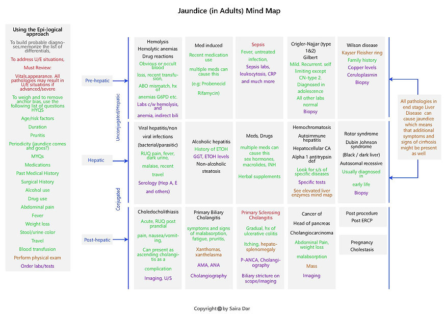 Jaundice (in Adults) Mind Map.jpg