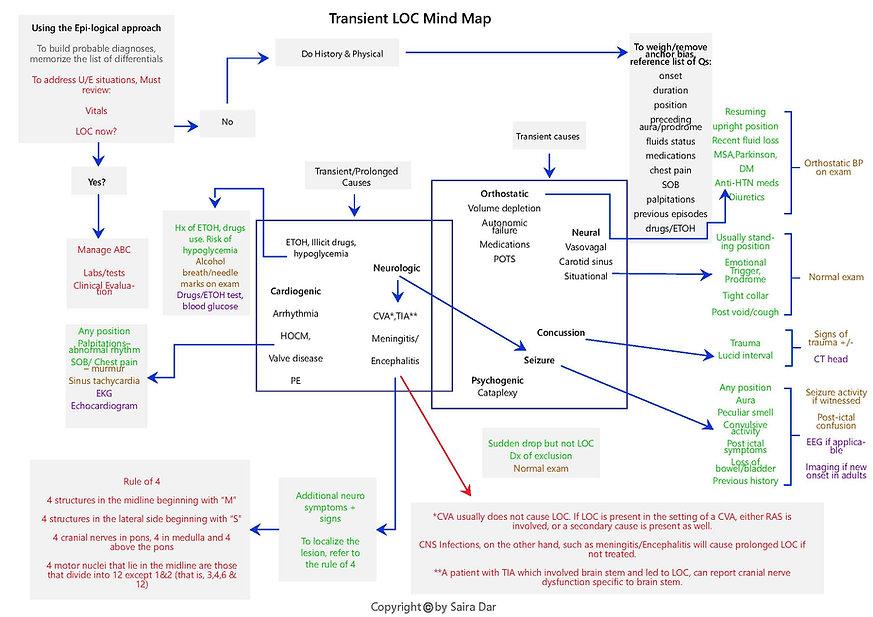 Transient LOC Mind Map.jpg