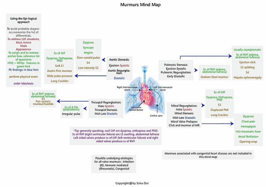 Murmurs Mind Map.webp