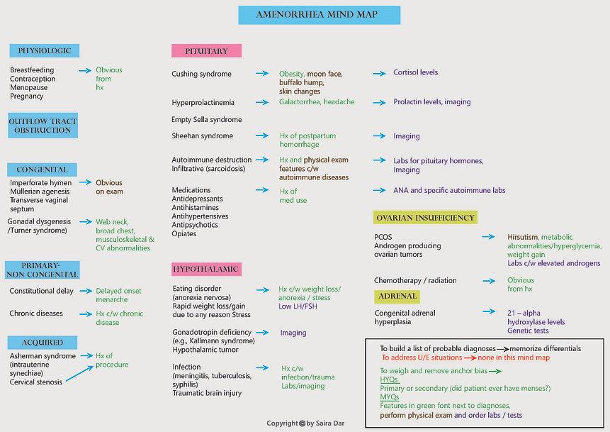 Amenorrhea Mind Map.jpg