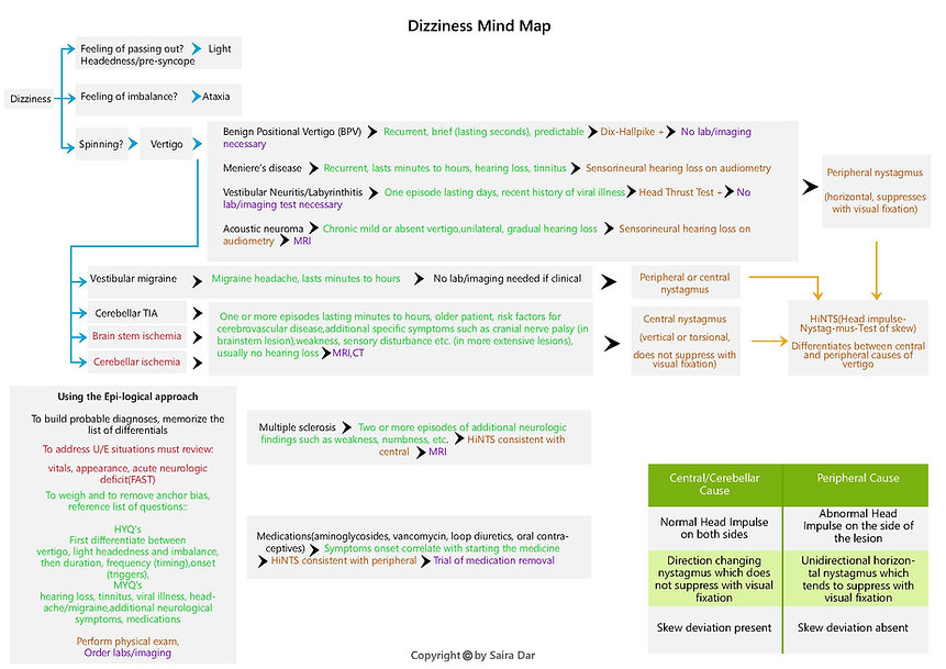 Dizziness Mind Map.jpg