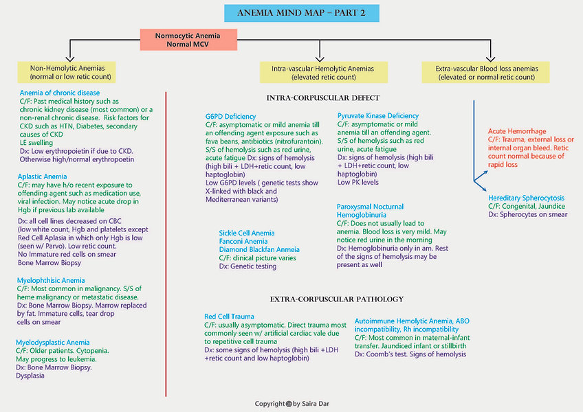 Anemia Mind Map part 2.jpg