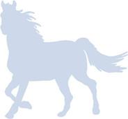HORSE+3.jpg